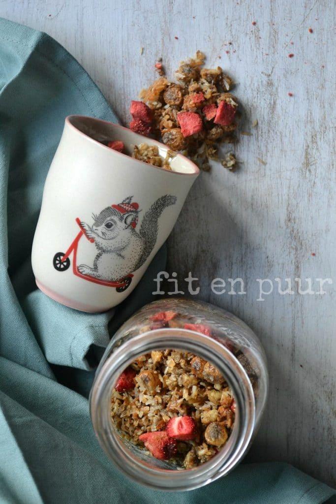Notenvrije paleo cruesli met gedroogde aardbeien